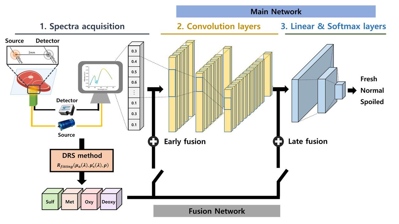 소고기 신선도 분류를 위한 심층 스펙트럼 네트워크 개략도. (사진=지스트 제공).